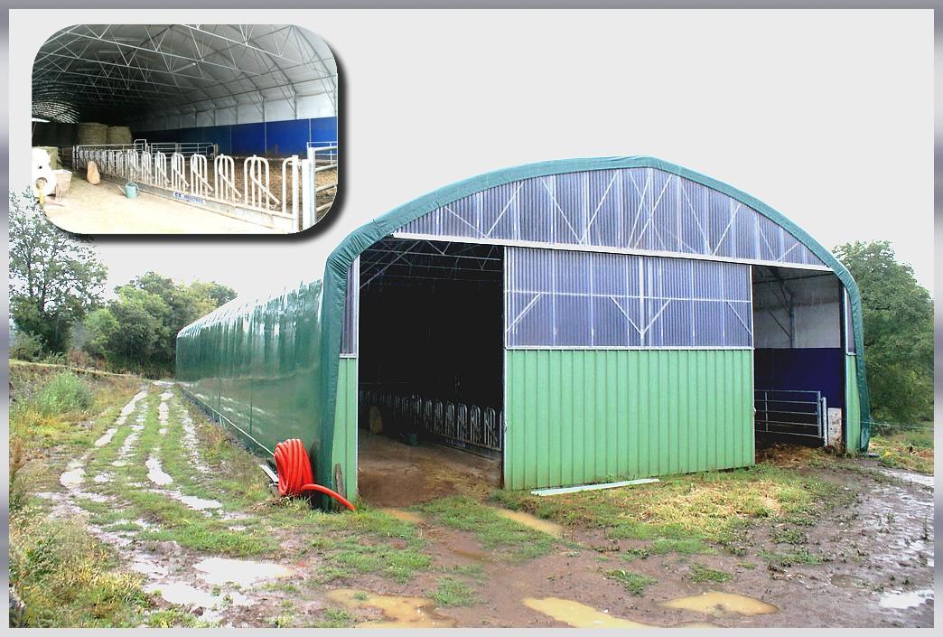 Tunnels bovins tunnel bovins b timent bovins for Garage tunnel metallique